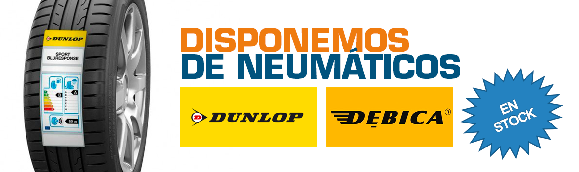 NEUMATICOS DUNLOP - DEBICA